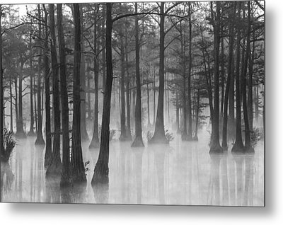 Adams Mill Pond 31 Metal Print