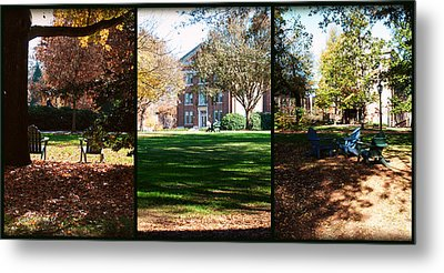 Adirondack Chairs Collage5 Metal Print by Paulette B Wright