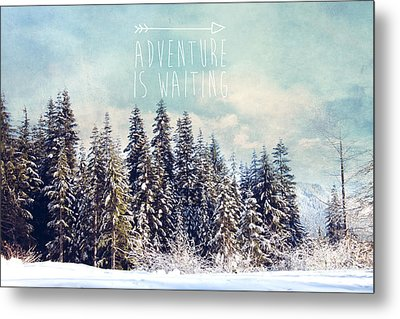 Metal Print featuring the photograph Adventure Is Waiting by Sylvia Cook