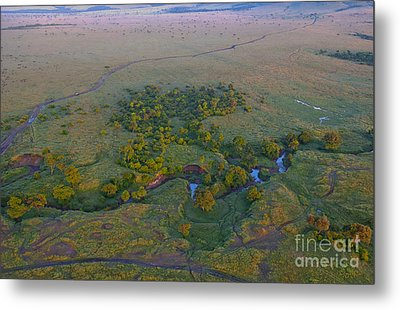 Aerial View Of Masai Mara, Kenya Metal Print by Bill Bachmann