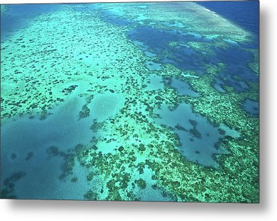 Aerial View Of The Great Barrier Reef Metal Print by Miva Stock
