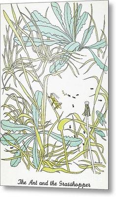 Aesop: Ant & Grasshopper Metal Print