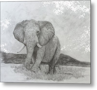 African Elephant Metal Print by Jim Hubbard