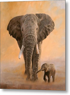 African Elephants Metal Print by David Stribbling