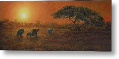 African Sunset Metal Print by Lucie Bilodeau