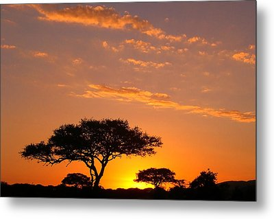 African Sunset Metal Print by Sebastian Musial
