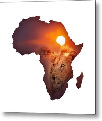 African Wildlife Map Metal Print by Johan Swanepoel