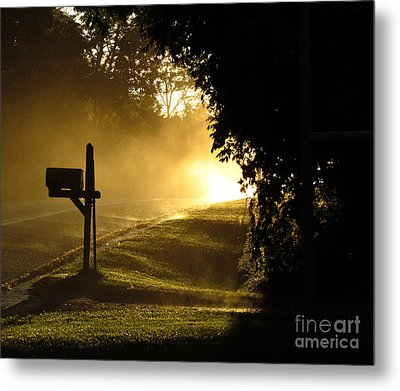 After An Evening Rain Metal Print by Deborah Johnson