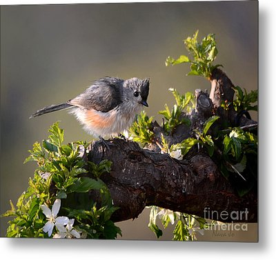 After The Bath Metal Print by Nava Thompson