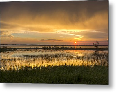 After The Rain Metal Print by Debra and Dave Vanderlaan