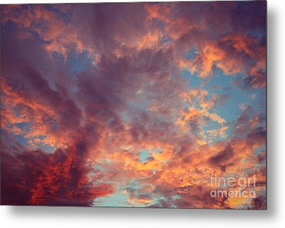 After The Rain Metal Print by Mary-Lee Sanders