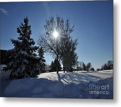 After The Snow 3 Metal Print by Graham Taylor