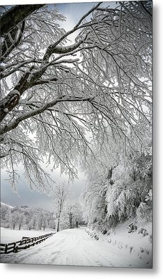 After The Snow Storm Metal Print by John Haldane