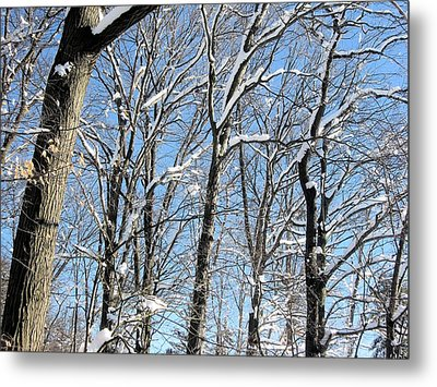 Metal Print featuring the digital art After The Snowfall 1 by Dennis Lundell