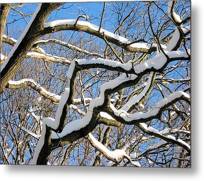 Metal Print featuring the digital art After The Snowfall 2 by Dennis Lundell