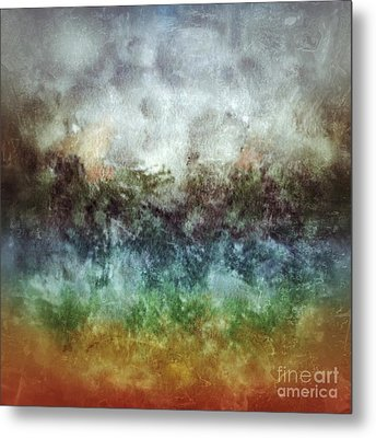 After The Storm Metal Print by Darla Wood
