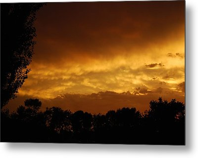 Metal Print featuring the photograph After The Storm by Ramona Whiteaker