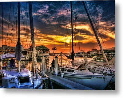 After The Storm Metal Print by Regina  Williams