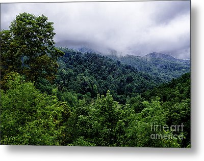 After The Storm Metal Print by Thomas R Fletcher