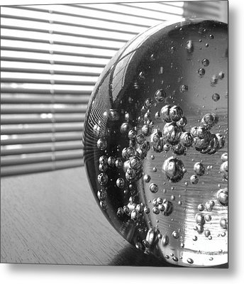 Afternoon Distraction Metal Print