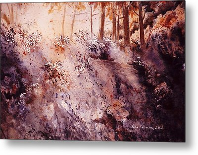 Metal Print featuring the painting Afternoon Light by John  Svenson