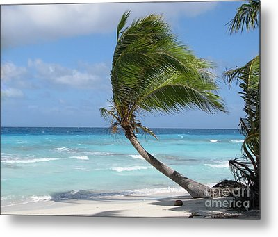 Metal Print featuring the photograph Against The Winds by Jola Martysz