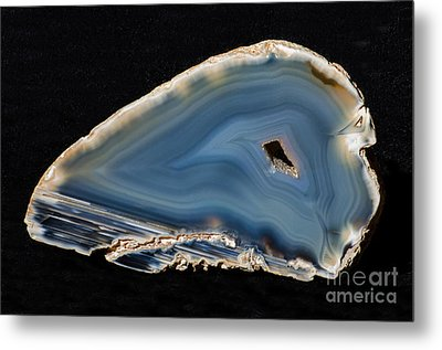 Agatized Fossil Coral Metal Print