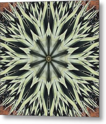 Metal Print featuring the digital art Agave Star by Trina Stephenson