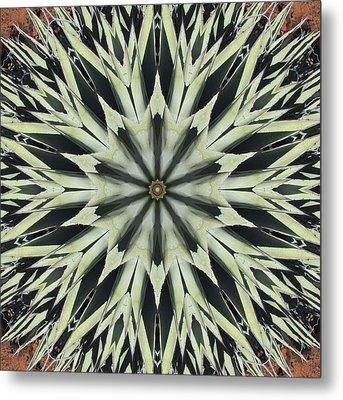 Agave Star Metal Print
