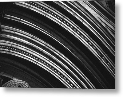 Metal Print featuring the photograph Ageless by Steven Macanka