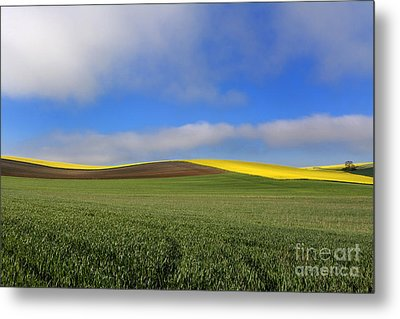 Agricultural Landscape. Auvergne. France. Metal Print by Bernard Jaubert