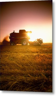 Agriculture - A Combine Harvests Wheat Metal Print by Mirek Weichsel
