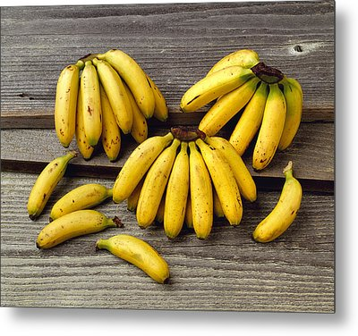 Agriculture - Baby Bananas Metal Print by Ed Young