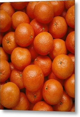 Agriculture - Field Of Tangerines Metal Print by Joel Glenn