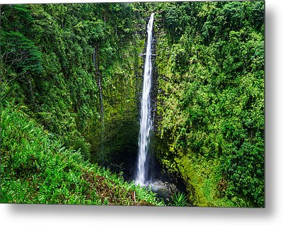 Metal Print featuring the photograph Big Island - Akaka Falls by Francesco Emanuele Carucci