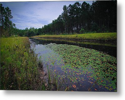 Alabama Country Metal Print by Julie Andel