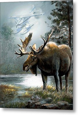 Alaska Moose With Floatplane Metal Print by Regina Femrite