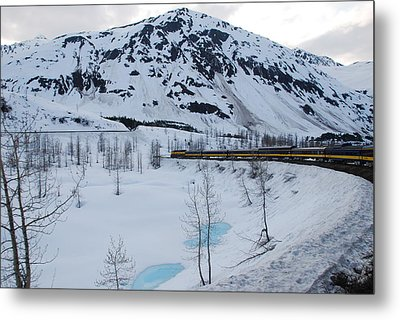 Alaska Train To Denali Metal Print