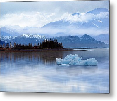 Alaskan Mountain Side Metal Print by Nina Bradica