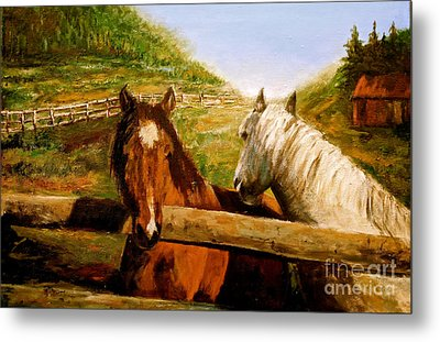 Metal Print featuring the painting Alberta Horse Farm by Sher Nasser