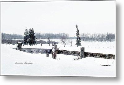Alberta Winter Wonderland Metal Print by Donna Brown