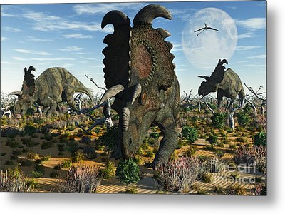 Albertaceratops Dinosaurs Grazing Metal Print by Mark Stevenson