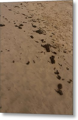 Algae Trail In The Sand Metal Print by Sandra Pena de Ortiz