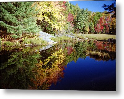 Metal Print featuring the photograph Algonquin Reflection by David Porteus