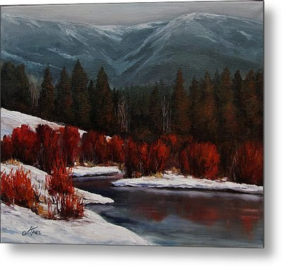 Alice Creek Metal Print by Suzanne Tynes