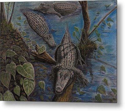 Aligators At Rest Metal Print by Richard Goohs