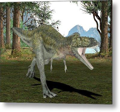 Alioramus Dinosaur Metal Print by Friedrich Saurer