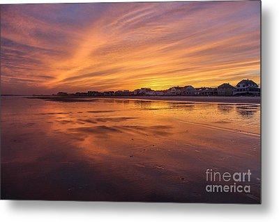 Alive With Color Metal Print by Joe Faragalli