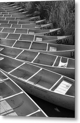 All In A Row Metal Print by Scott Campbell