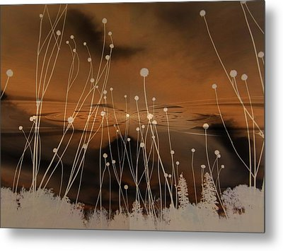 All Is Quiet Metal Print by Shirley Sirois
